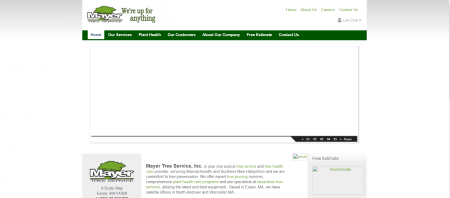 Tree Service Mayer Tree Service Company Tree Removal Tree Trimming MA NH